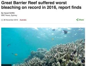great-barrier-bbc-news-screenshot