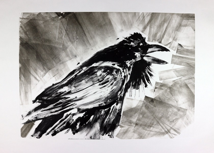 Crows 01