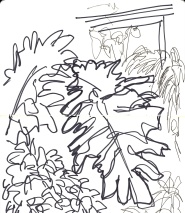 Barbican Conservatory 3-minute sketch 02