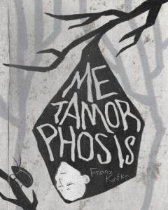 The Metamorphosis book cover 06